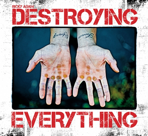 Destroying book 2nd edition hi res cover